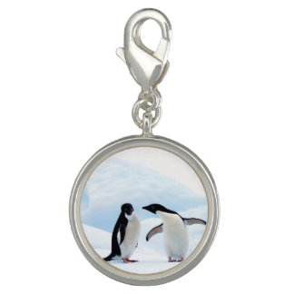 Adelie Penguins Photo Charms