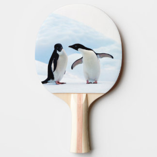 Adelie Penguins Ping Pong Paddle