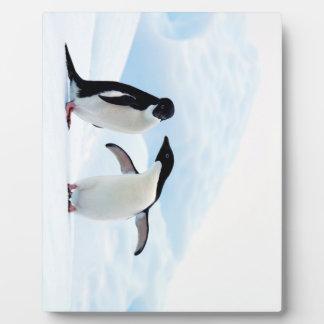Adelie Penguins Plaque