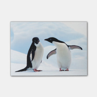 Adelie Penguins Post-it® Notes