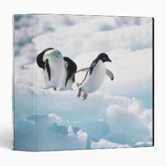 Adelie penguins (pygoscelis adeliae) Antarctica Binder