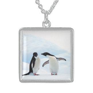 Adelie Penguins Sterling Silver Necklace