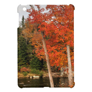 Adirondack Autumn Cover For The iPad Mini