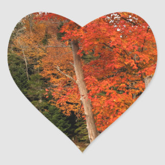 Adirondack Autumn Heart Sticker