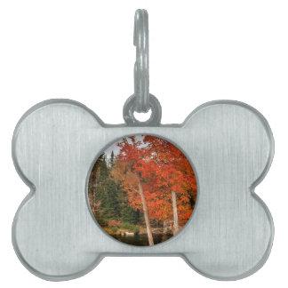 Adirondack Autumn Pet Name Tag