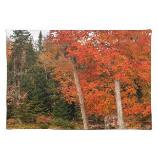 Adirondack Autumn Placemat