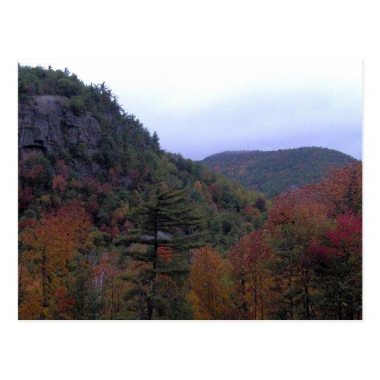 Adirondacks Postcard
