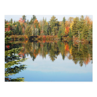 Adirondacks Upper Chub River Autumn Scene Postcard