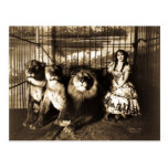 Adjie and the Lions 1899 Post Cards