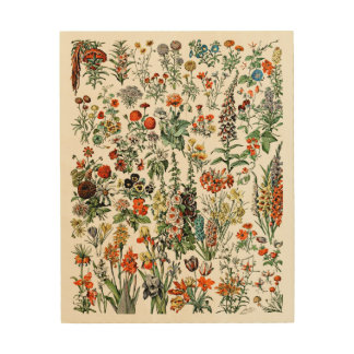 Adolphe Millot Flowers Wood Block Wood Wall Decor