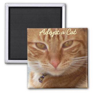 Adopt a Cat_ Square Magnet