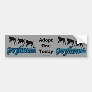 Adopt A Greyhound Bumper Sticker