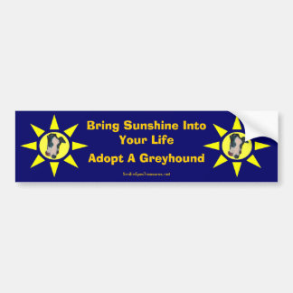 Adopt A Greyhound Sunshine In Life Bumper Sticker