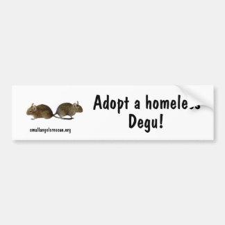 Adopt a homeless Degu! Bumper Sticker