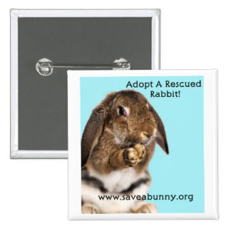 Adopt A Rescued Rabbit! 2 Inch Square Button
