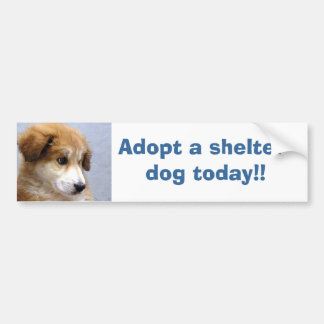 Adopt a shelter dog bumper sticker