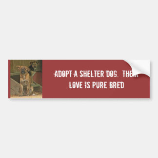 Adopt a shelter dog.  Their love is pure Bumper Sticker