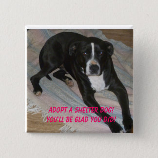 Adopt a Shelter Dog Today! 2 Inch Square Button