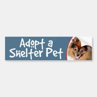 Adopt a Shelter Pet Pomeranian Bumper Sticker