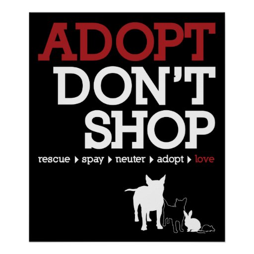 Adopt Don't Shop Print