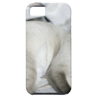 ADOPT Opal iPhone 5 Covers