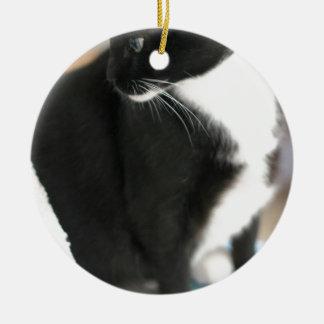 ADOPT Orion Round Ceramic Ornament