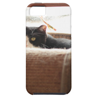 ADOPT Zoey iPhone 5 Cover
