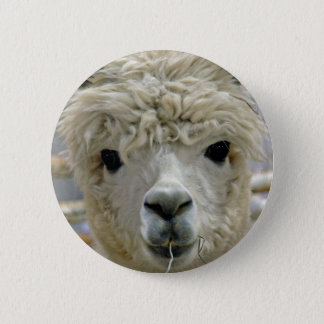 Adorable 2 Inch Round Button