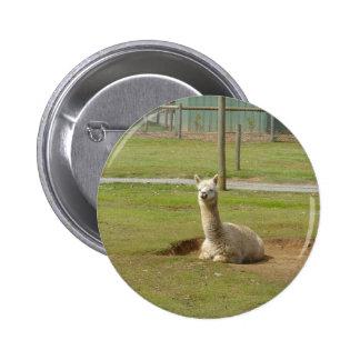 Adorable Alpaca Buttons