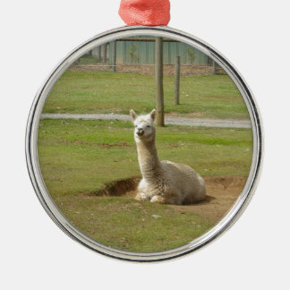 Adorable Alpaca Silver-Colored Round Ornament