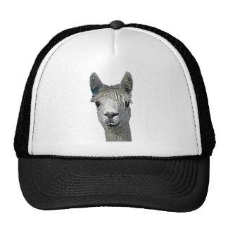 Adorable Alpaca Trucker Hat