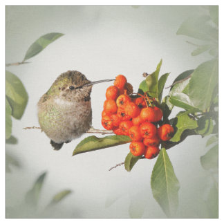 Adorable Anna's Hummingbird on the Berry Bush Fabric