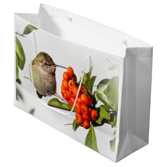 Adorable Anna's Hummingbird on the Berry Bush Large Gift Bag