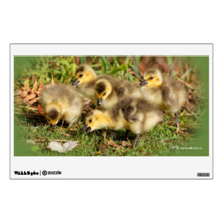 Adorable Baby Canada Geese on the Grass Wall Sticker