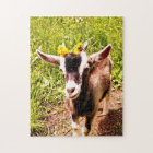 Adorable Baby Goat Puzzle