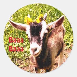 Adorable Baby Goat Says Baaa Baaa Classic Round Sticker