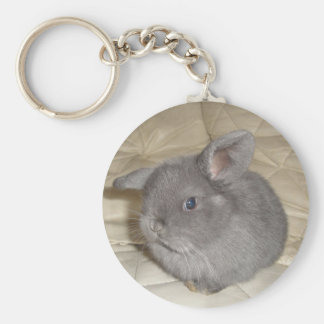 Adorable Baby Mini Lop Basic Round Button Keychain