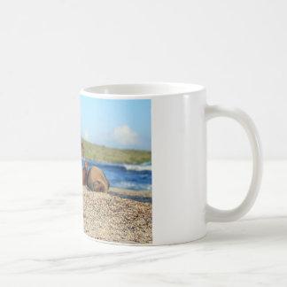 Adorable baby sea lion Galapagos Islands Coffee Mug