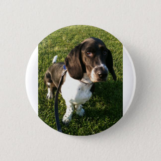 Adorable Basset Hound Snoopy 2 Inch Round Button