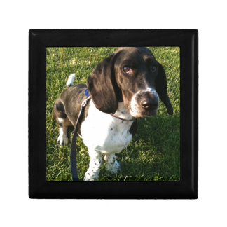 Adorable Basset Hound Snoopy Gift Box