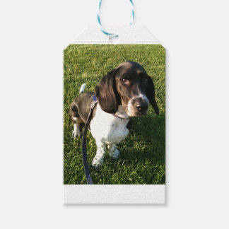 Adorable Basset Hound Snoopy Gift Tags