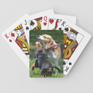 Adorable Beagle Puppy and Mom Poker Deck