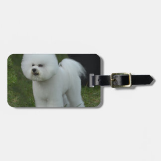Adorable Bichon Luggage Tag