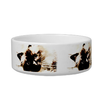 adorable Birman Cat Pet food cat bowl