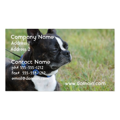 Adorable Boston Terrier Business Cards