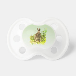 Adorable Brown Bunny Rabbit in Green Pacifier