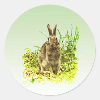 Adorable Bunny Rabbit in Grass Sticker