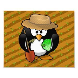Adorable Cartoon Penguin Farmer on Field Photographic Print