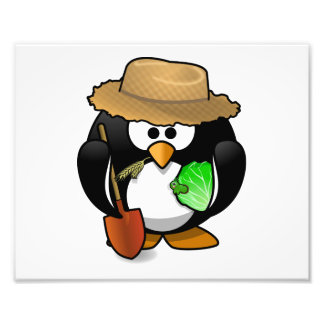 Adorable Cartoon Penguin Farmer Photograph