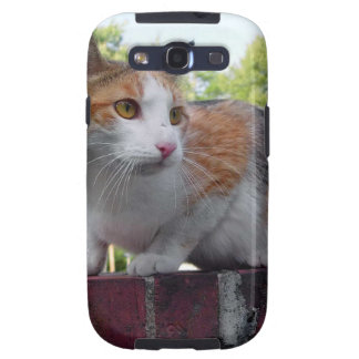 Adorable cat on red brick wall galaxy SIII cases